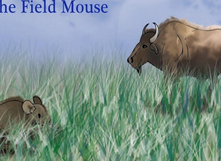 Le bison et la souris des champs